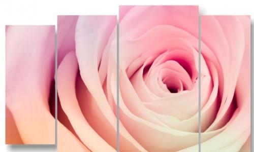 МК-040 Нежная роза