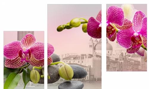 МК-020 Орхидеи на камнях