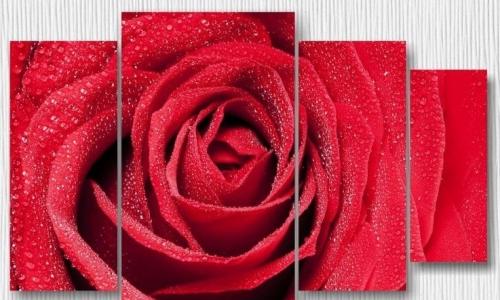 МК-062 Красная роза