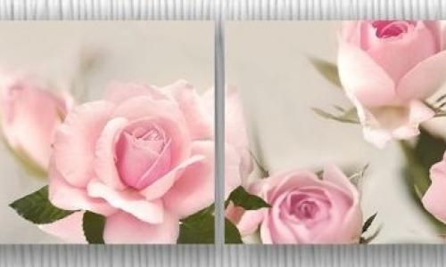 МК-055 Розовые розы