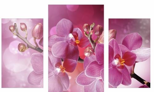 МК-014 Ветка орхидеи