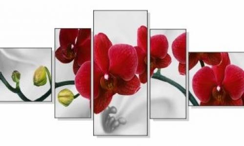 МК-045 Красная орхидея