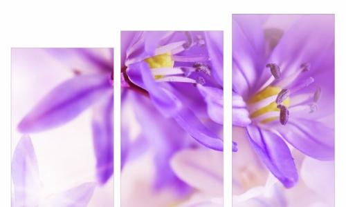 МК-019 Букет сиреневых цветов