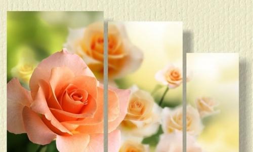 МК-044 Оранжевые розы