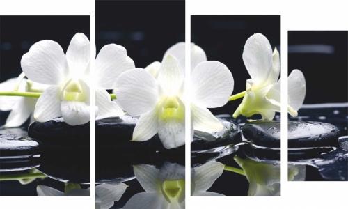 МК-052, Белая орхидея на черном