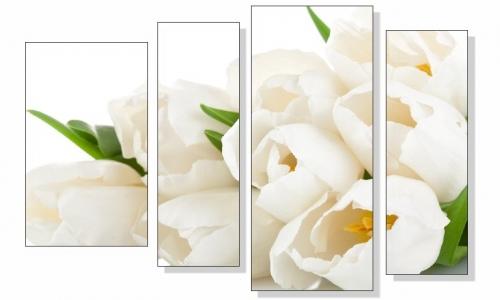 МК-038  Белые тюльпаны