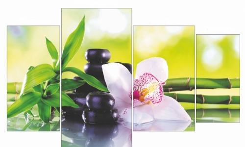 МК-041 Орхидея