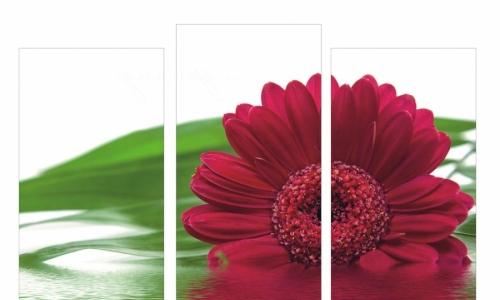 МК-010 Цветок на воде